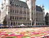 Flowercarpet080800