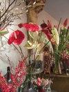 Puurbloemen090205