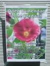 Jordaanog1107