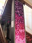 Bilzen1109oneflower05