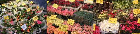 Lindenmarkt12012105