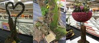 Ipm2012messecupplants05