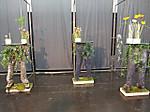 Ipm2012plants01_2