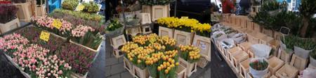 Lindenmarkt20120301