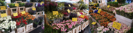 Lindenmarkt20120302