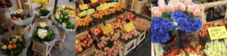 Lindenmarkt20120303