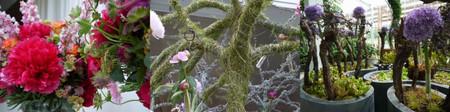 Floriade201206green07