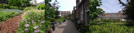 Utrecht201306og3229