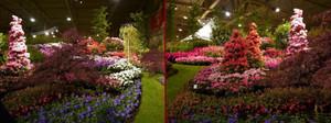 Floralien201402
