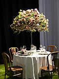 Floralien2014table01