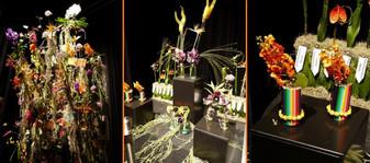 Floralien2014life0403
