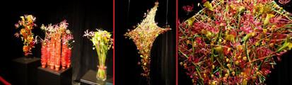 Floralien2014life2610