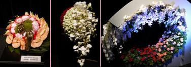 Floralien2014life2711
