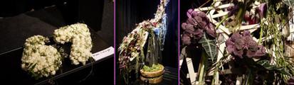 Floralien2014life2812