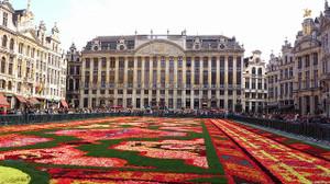 Flowercarpet201401