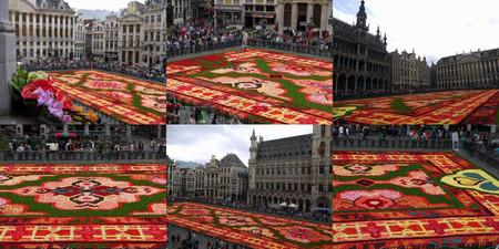Flowercarpet201402