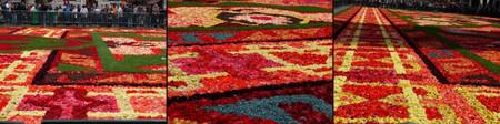 Flowercarpet2014up