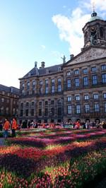 Tulipday20150101