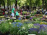 Utrechtmarkt20150601