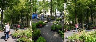 Utrechtmarkt20150602