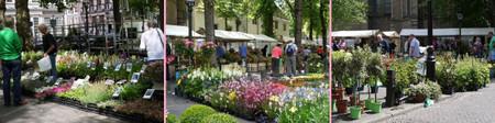 Utrechtmarkt20150603