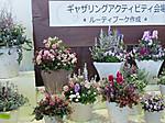 Atsumi201602ev10