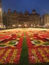 Flowercarpet4