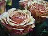 Rosemarrakeshup