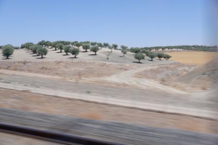 Spain201901train04